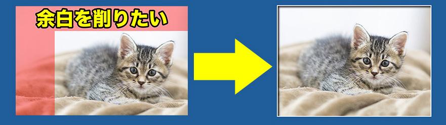 シェイプに画像をはめ込むアクションの作り方